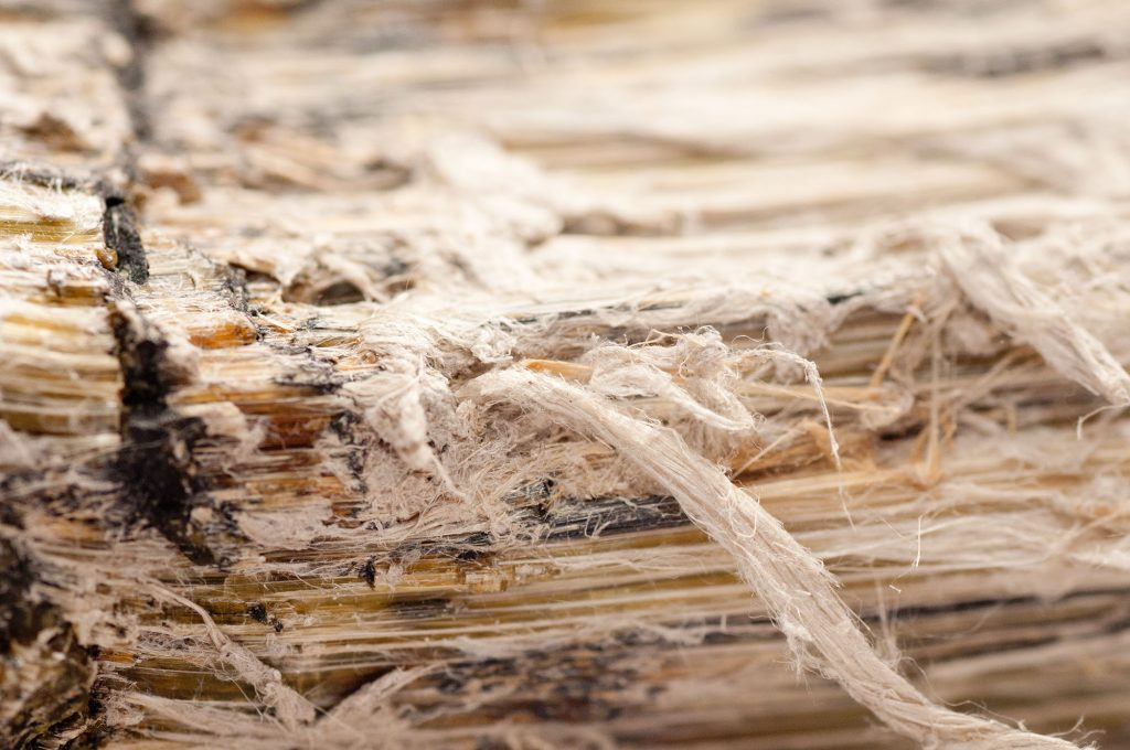 Asbestos chrysotile fibers that cause occupational lung disease, COPD, lung cancer, mesothelioma